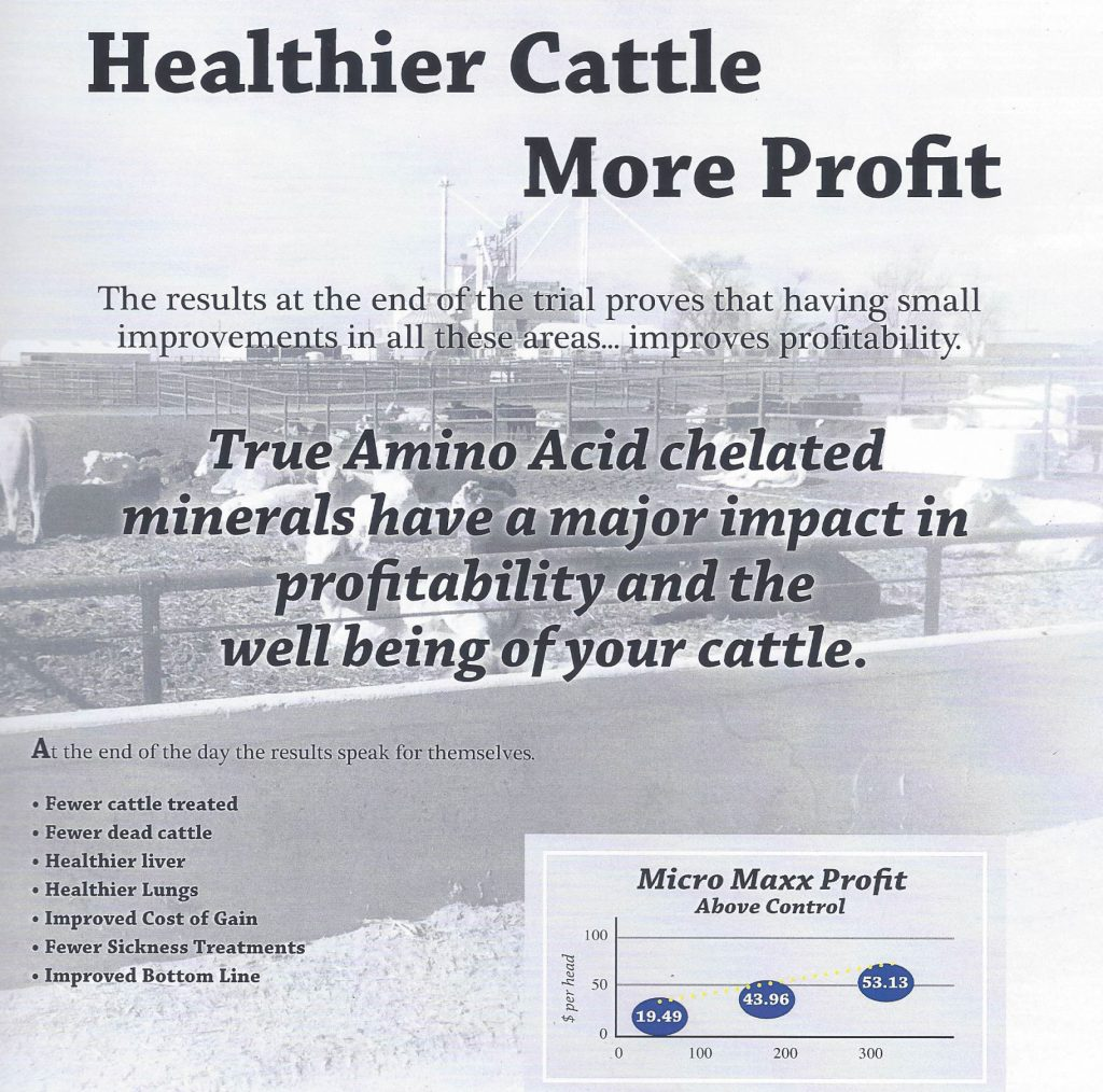 beef-research-brochure-6